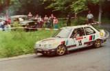 20. Tin Svanholt i Knud Hansen - Peugeot 309 GTi 16S.